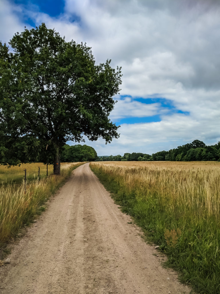 A PHOTO LOVERS GUIDE TO ÖSTERLEN IN SOUTHERN SWEDEN 5