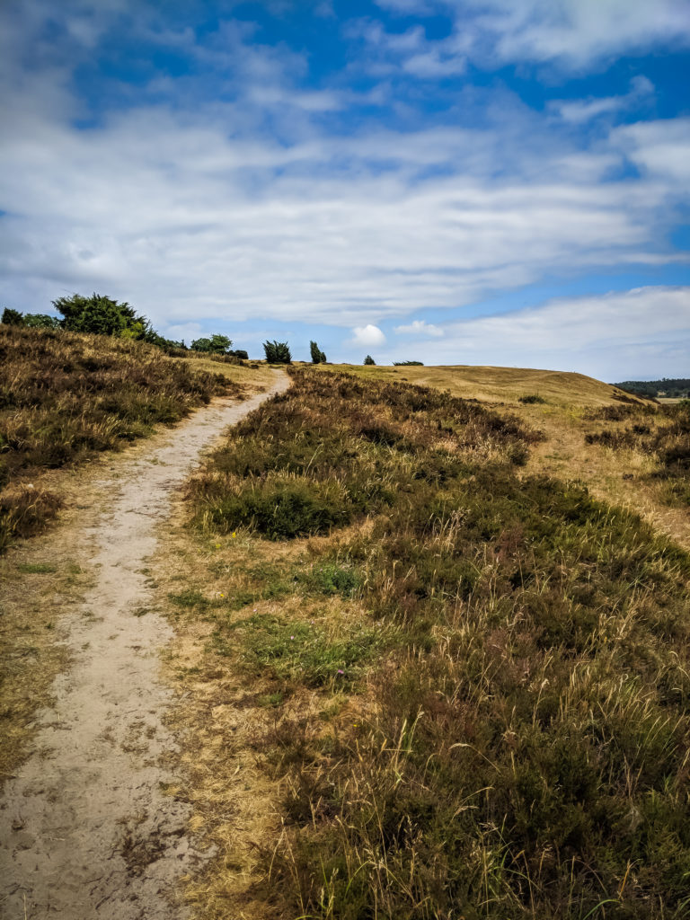 A PHOTO LOVERS GUIDE TO ÖSTERLEN IN SOUTHERN SWEDEN 6
