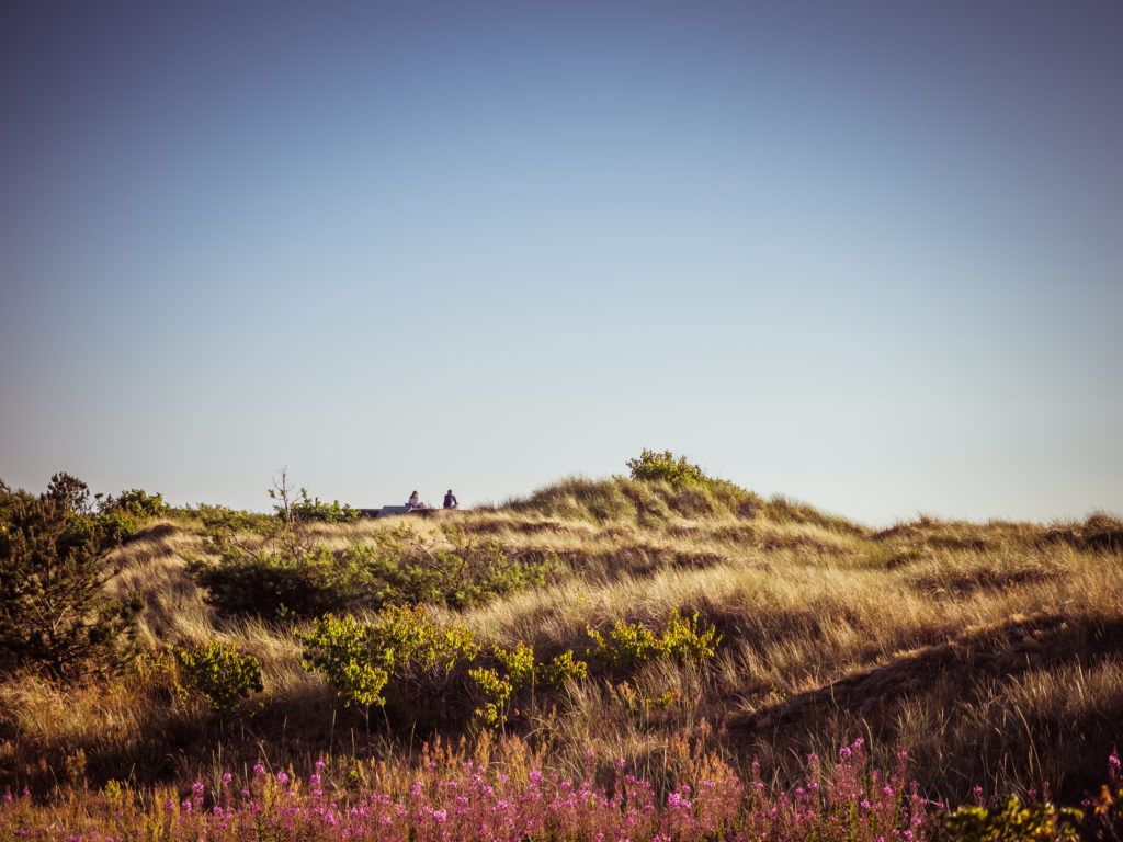 A PHOTO LOVERS GUIDE TO SKÅNE, SWEDEN 33