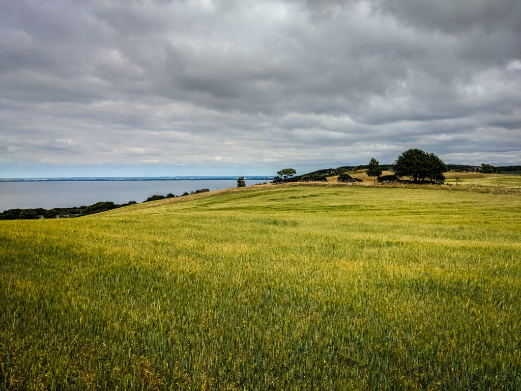 A PHOTO LOVERS GUIDE TO SKÅNE, SWEDEN 44